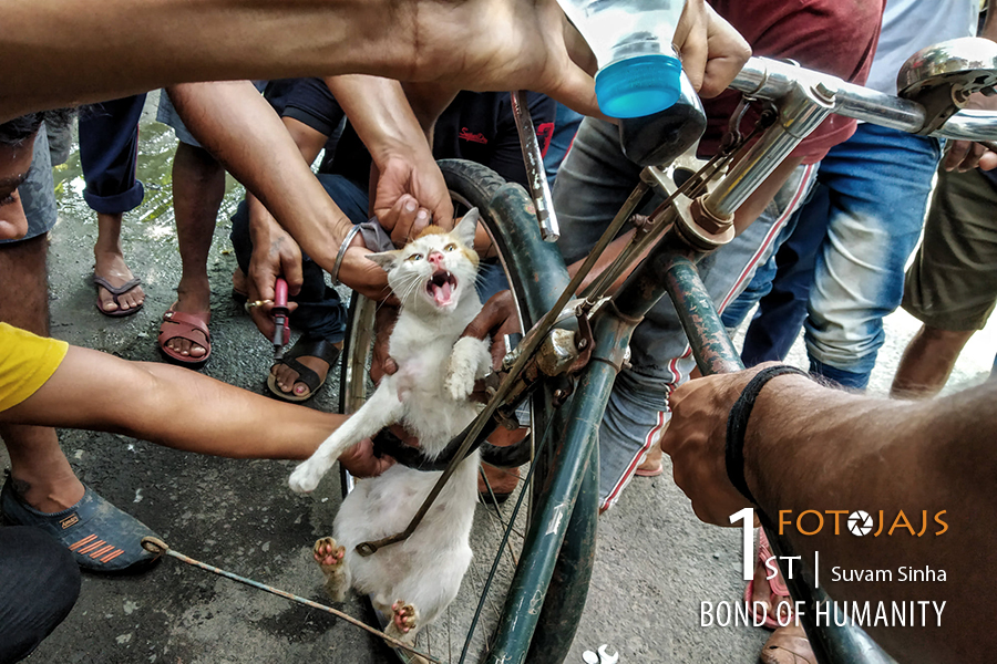 Bond of Humanity